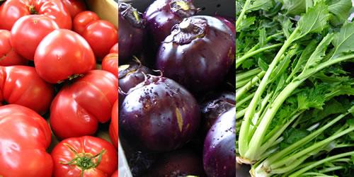 旬の野菜の写真